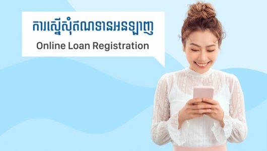 Online-Loan-Register